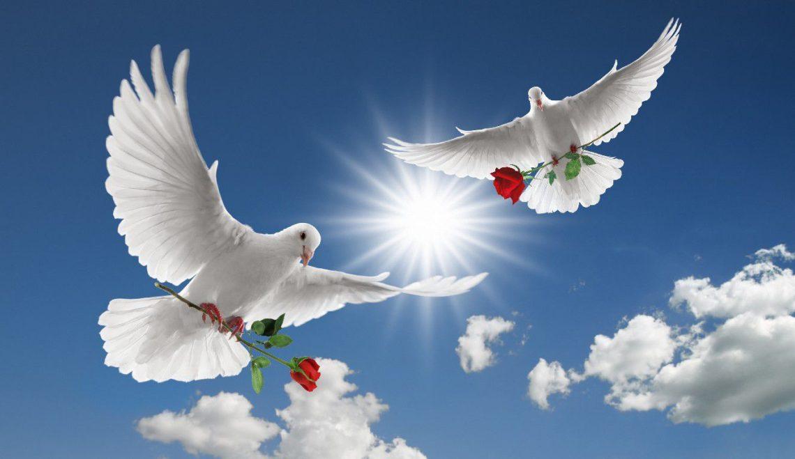 Onoranze Funebri e Funerali